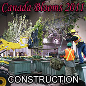 Canada Blooms Construction